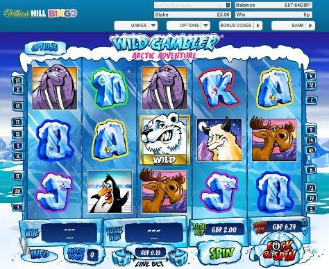 Wild Gambler- Arctic Adventure Preview